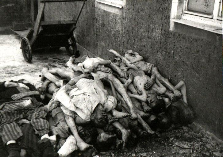Buchenwald-2m
